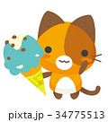 猫 三毛猫 アイスのイラスト 34775513