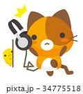 猫 三毛猫 ヘッドフォンのイラスト 34775518