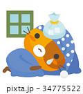 猫 三毛猫 風邪のイラスト 34775522