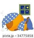 猫 三毛猫 パジャマのイラスト 34775858