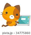 猫 三毛猫 パソコンのイラスト 34775860