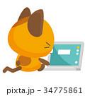 猫 三毛猫 表情のイラスト 34775861