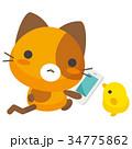 猫 三毛猫 スマホのイラスト 34775862