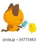猫 三毛猫 スマホのイラスト 34775863