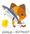 ネコとーく。三毛猫+鰹 34776107