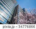 東京ミッドタウンの桜 34776866