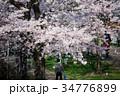 東京ミッドタウンの公園と桜 34776899