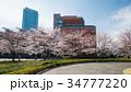 政策研究大学院大学と桜 34777220