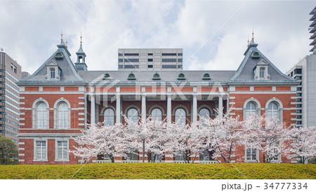 法務省と桜 34777334