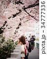 桜を撮る女性 34777336
