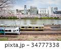神田川と桜と電車 34777338