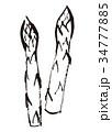 アスパラ アスパラガス 野菜のイラスト 34777885