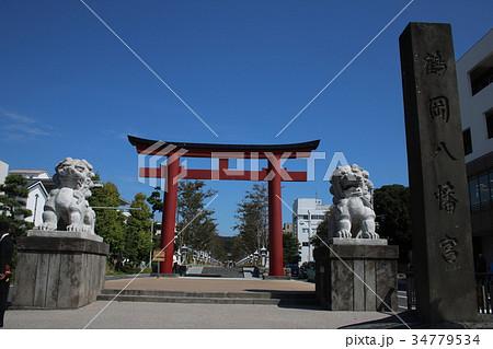 (鎌倉)鶴岡八幡宮 二の鳥居と狛犬 34779534