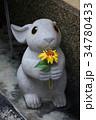 辻子に置かれたうさぎの石像 34780433