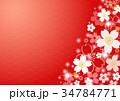 和柄 花 梅のイラスト 34784771