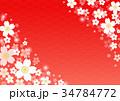 和柄 花 梅のイラスト 34784772
