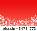和柄 花 梅のイラスト 34784773