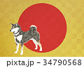 戌 戌年 年賀状のイラスト 34790568