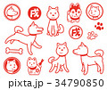 戌年 戌 犬のイラスト 34790850