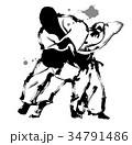 柔道 34791486