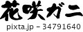 花咲ガニ 34791640
