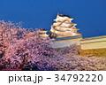 姫路城 白鷺城 桜の写真 34792220