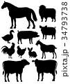 農場の動物たち 素材 シルエット 34793738