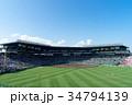 夏の甲子園球場 34794139