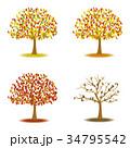 紅葉 秋 葉のイラスト 34795542