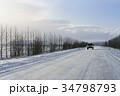 冬 季節 木の写真 34798793