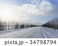 冬 季節 木の写真 34798794