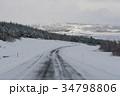冬 季節 木の写真 34798806