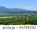 風景 初夏 中富良野町の写真 34799392