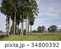 本堂城跡 美郷町 風景の写真 34800392