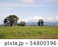 本堂城跡 美郷町 青空の写真 34800396