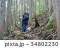 登山 陣馬山 山登りの写真 34802230