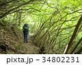 登山 陣馬山 山登りの写真 34802231