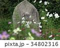 コスモス寺の石仏 34802316