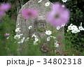 コスモス寺の石仏 34802318