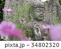 コスモス寺の石仏 34802320