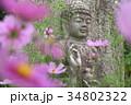 コスモス寺の石仏 34802322