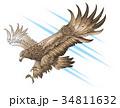 攻め 攻撃 ワシのイラスト 34811632