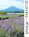 富士山 ラベンダー ラベンダー畑の写真 34814779
