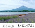 富士山 ラベンダー ラベンダー畑の写真 34814781