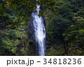 【日本の滝100選】阿弥陀ヶ滝 34818236