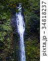 【日本の滝100選】阿弥陀ヶ滝 34818237