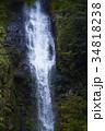 【日本の滝100選】阿弥陀ヶ滝 34818238