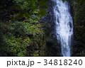 【日本の滝100選】阿弥陀ヶ滝(コピースペース) 34818240