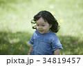 芝生で遊ぶ女の子 34819457