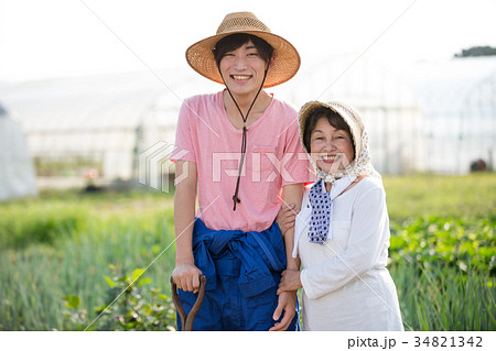 農家 畑 祖母と孫 34821342